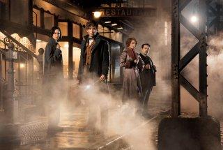 Animali fantastici e dove trovarli: il cast del film tratto dal libro di J.K. Rowling
