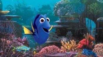 Alla ricerca di Dory: un'immagine tratta dal nuovo film animato targato Disney Pixar