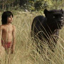 Il libro della giungla: una scena del film Disney