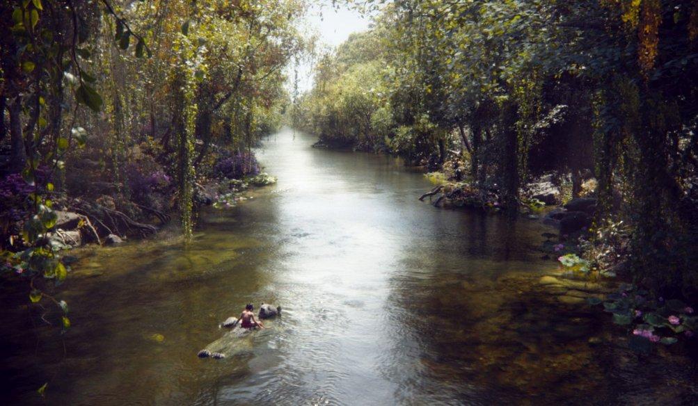 Il libro della giungla: una suggestiva immagine tratta dal film