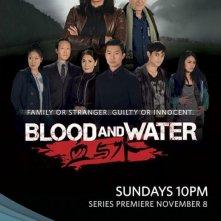 Blood and Water: la locandina della serie