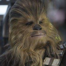 Star Wars: Il Risveglio della Forza - Chewbacca in una foto del film