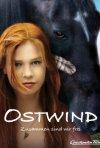 Locandina di Windstorm - Liberi nel vento