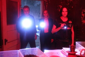CSI: Scena del crimine - William Petersen, Marg Helgenberger e Jorja Fox in Immortality