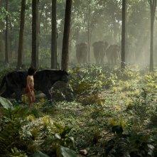 The jungle book: il giovane Neel Sethi insieme alla pantera nera Bagheera