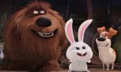 Pets - Vita da animali: il trailer dedicato al simpatico Snowball
