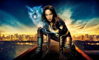 Arrow: Megalyn Echikunwoke  è Vixen