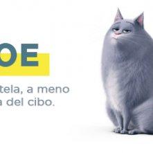 Pets - Vita da animali: la descrizione di Chloe