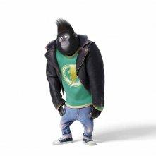 Sing: il gorilla che è tra i protagonisti del film