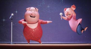 Sing: due simpatici maialini