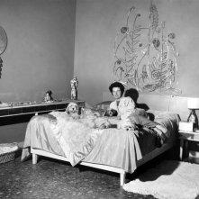 Peggy Guggenheim: Art Addict, Peggy Guggenheim con i suoi cani in un'immagine tratta dal documentario