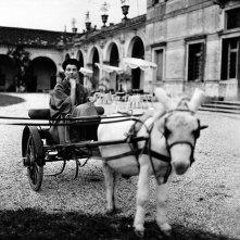 Peggy Guggenheim: Art Addict, Peggy Guggenheim in una bella immagine del documentario
