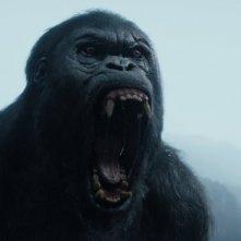 The Legend of Tarzan: un'immagine del film