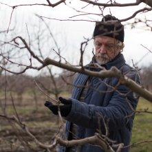 Banat - Il viaggio: Stefan Velniciuc in una scena del film