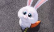 Pets: i simpatici auguri pasquali del film animato