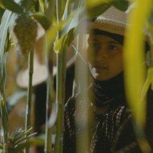 La sposa bambina: Reham Mohammed in una bella immagine del film