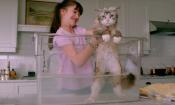 Nine Lives: Kevin Spacey si trasforma in un gatto nel nuovo trailer