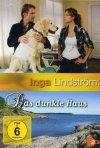 Locandina di Inga Lindström - Innamorarsi ancora