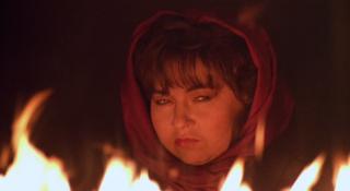 Roseanne Barr in She-Devil
