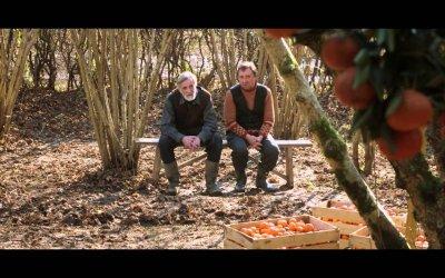 Tangerines - Mandarini - Trailer italiano