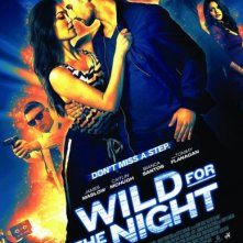 Locandina di Wild for the Night