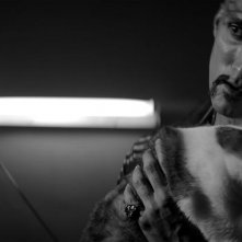 A Girl Walks Home Alone at Night: Dominic Rains in un'immagine del film