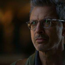 Independence Day: Rigenerazione - un primo piano di Jeff Goldblum
