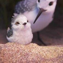 Piper: un'immagine del corto Pixar