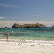 Paradise Beach - Dentro l'incubo: Blake Lively in un momento del film