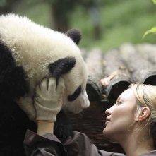 Sneezing Baby Panda: Amber Clayton insieme al panda in una scena del film