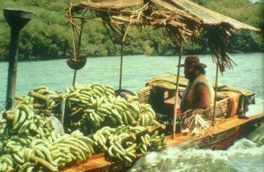 Banana Joe: Bud Spencer in un'immagine del film