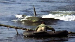 Una scena di Lo squalo 2