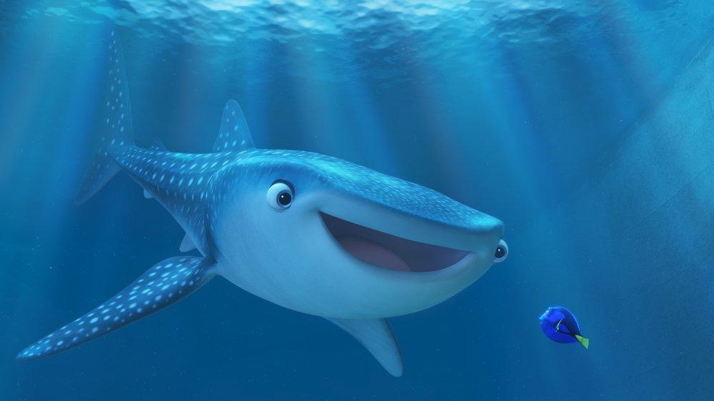 Alla ricerca di Dory: un'immagine del film animato