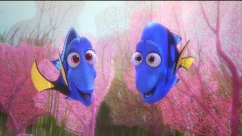 Alla ricerca di Dory: un momento del film d'animazione