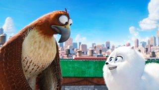 Pets - Vita da animali: una scena del film d'animazione