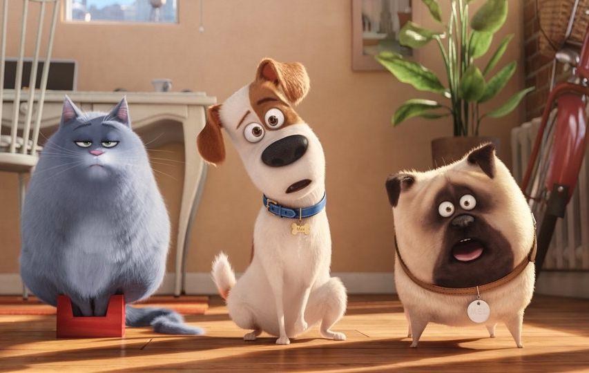 Pets - Vita da animali: una simpatica immagine del film animato