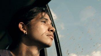 Spira mirabilis: un primo piano del documentario
