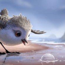Piper: un'immagine del nuovo corto della Pixar