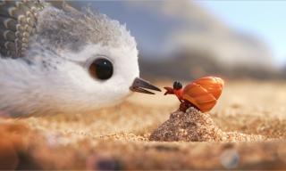 Piper: una bella immagine del corto Pixar
