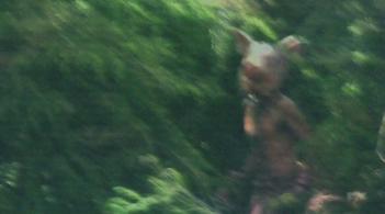 American Horror Story: una strana immagine apparsa nella première