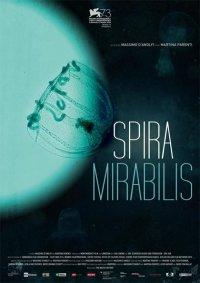 Spira mirabilis in streaming & download