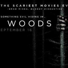 Il mistero del bosco: un'immagine promozionale del film