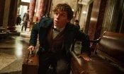 Animali Fantastici: J.K. Rowling è al lavoro sullo script del terzo film