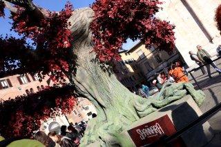 Lucca 2016: L'albero di The Shannara Chronicles