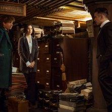 Animali Fantastici e Dove Trovarli: Eddie Redmayne, Katherine Waterston e Colin Farrell in una foto del film