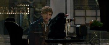 Animali Fantastici e Dove Trovarli: il protagonista Eddie Redmayne insieme a una simpatica creatura