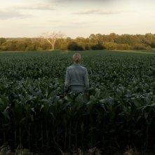 Lavender: Abbie Cornish in un momento del film