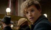 Newt Scamander era nei film di Harry Potter?