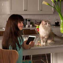 Una vita da gatto: Malina Weissman in una scena del film