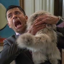 Una vita da gatto: Mark Consuelos in una scena del film